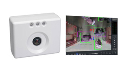 IP Camera & Image Recognising People Counter